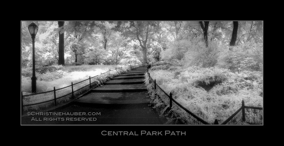 Central Park Path - Infrared