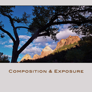 Compositions and Exposure